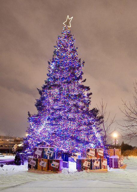 Kijiji , Noël au marché de la gare de Sherbrooke