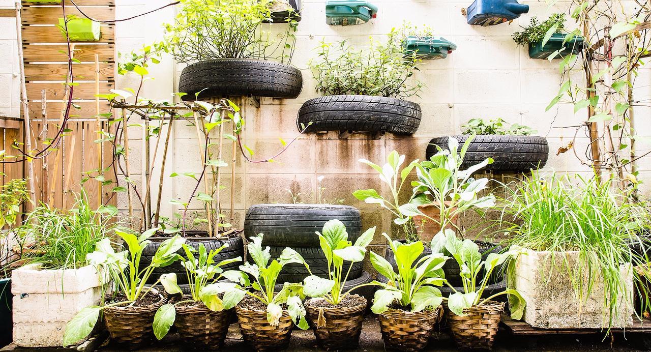 Inspirations Et Conseils Pour Concevoir Un Jardin Urbain Carrefour